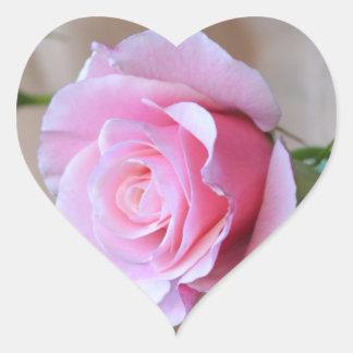 Pegatinas color de rosa del corazón de la pegatina en forma de corazón