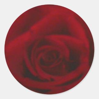 pegatinas color de rosa pegatina redonda