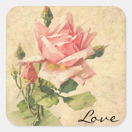Pegatinas color de rosa rosados elegantes pegatinas cuadradas