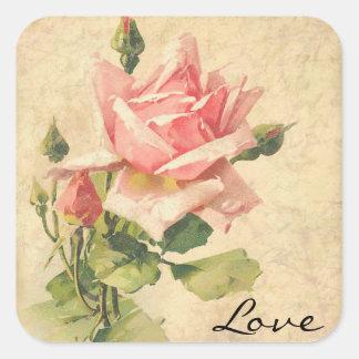 Pegatinas color de rosa rosados elegantes pegatina cuadrada
