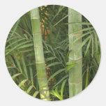 pegatinas de bambú