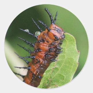Pegatinas de Caterpillar de la mariposa del Pegatina Redonda