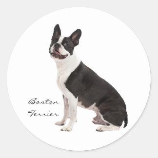 Pegatinas de encargo hermosos del perro de Boston Pegatina Redonda