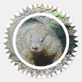 Pegatinas de Groundhog Pegatina Redonda