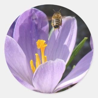 Pegatinas de la abeja ocupada pegatinas redondas