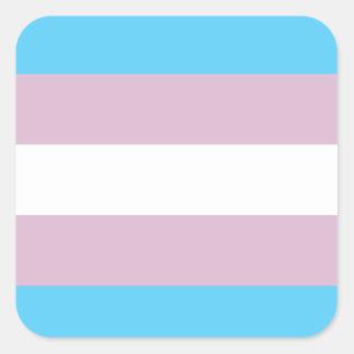 Pegatinas de la bandera del orgullo del transexual pegatina cuadrada