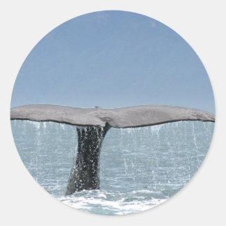 Pegatinas de la cola de la ballena etiquetas redondas