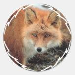 Pegatinas de la especie del Fox