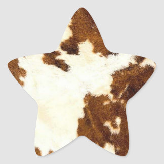 Pegatinas de la estrella de la impresión del pegatina en forma de estrella