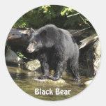 Pegatinas de la fauna del oso negro de la etiquetas redondas