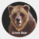 Pegatinas de la fauna del retrato del oso grizzly pegatina redonda
