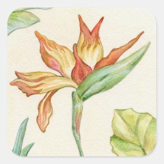 Pegatinas de la flor de la ave del paraíso pegatina cuadrada