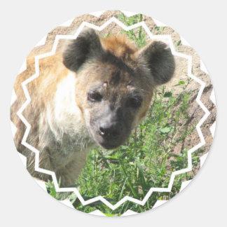 Pegatinas de la foto del Hyena Etiqueta Redonda