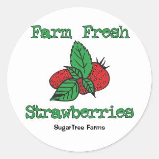 Pegatinas de la fresa - fresas frescas de la granj