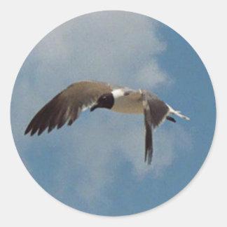 Pegatinas de la gaviota del vuelo etiquetas redondas