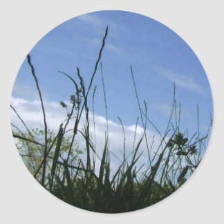 Pegatinas de la hierba y del cielo pegatina redonda