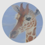 Pegatinas de la jirafa pegatina redonda
