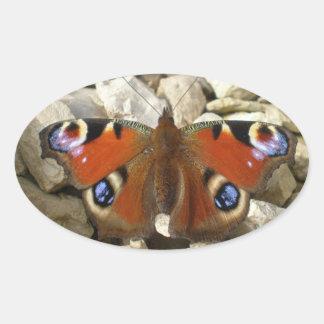 Pegatinas de la mariposa de pavo real calcomanías ovaladas