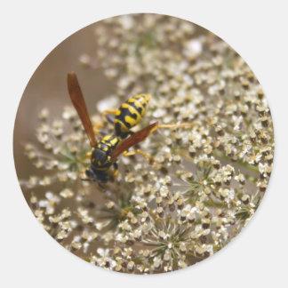 Pegatinas de la mosca de la libración pegatina redonda
