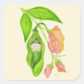 Pegatinas de la niña del guisante de olor pegatinas cuadradas