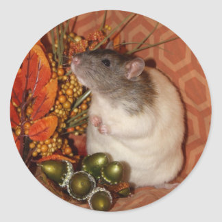 Pegatinas de la rata de la caída pegatina redonda