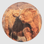 Pegatinas de la vaca de la montaña