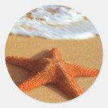 Pegatinas de las estrellas de mar