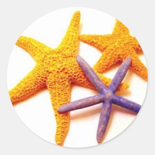Pegatinas de las estrellas de mar del verano pegatina redonda