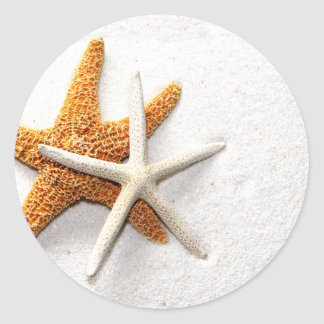 Pegatinas de las estrellas de mar pegatina redonda