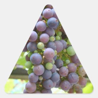 Pegatinas de las uvas pegatina triangular