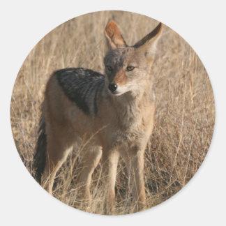 Pegatinas de los coyotes del bebé pegatina redonda