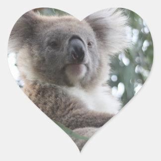 Pegatinas de los hechos del oso de koala pegatina en forma de corazón