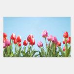Pegatinas de los tulipanes de la primavera rectangular pegatinas