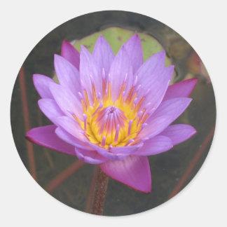 Pegatinas de Lotus