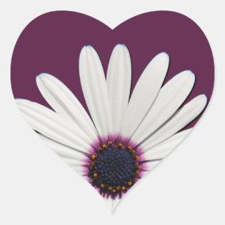 Pegatinas de Purple Heart de la margarita Pegatina En Forma De Corazón