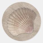 Pegatinas de Shell del mar Pegatinas Redondas