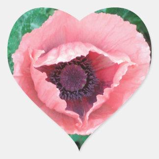 Pegatinas decorativos rosados de la amapola pegatina en forma de corazón
