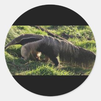 Pegatinas del Anteater gigante Pegatinas Redondas