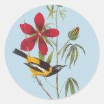 Pegatinas del arte del pájaro de Audubon Troupial Etiqueta Redonda