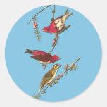 Pegatinas del arte del pájaro del pinzón púrpura pegatinas redondas