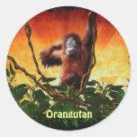 Pegatinas del bebé del orangután y del primate del pegatinas redondas