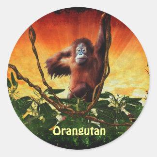 Pegatinas del bebé del orangután y del primate del pegatina redonda