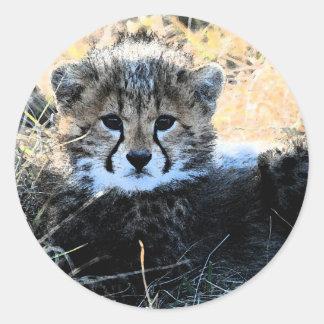 Pegatinas del cachorro del guepardo pegatina redonda