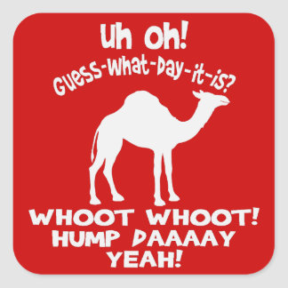 Pegatinas del camello del día de chepa calcomania cuadradas personalizadas