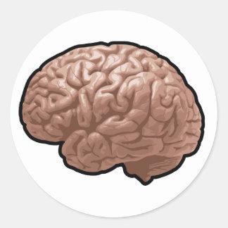 Pegatinas del cerebro humano pegatina redonda
