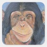 Pegatinas del chimpancé pegatina cuadrada