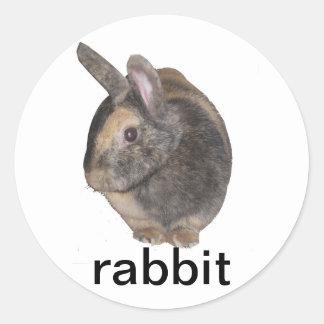 pegatinas del conejo pegatina redonda