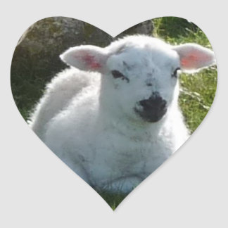 Pegatinas del cordero de la primavera del bebé pegatina de corazón