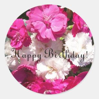 Pegatinas del cumpleaños de los claveles pegatina redonda