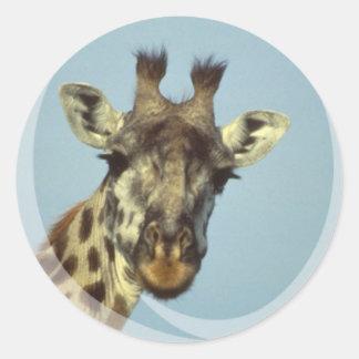 Pegatinas del diseño de la jirafa pegatina redonda